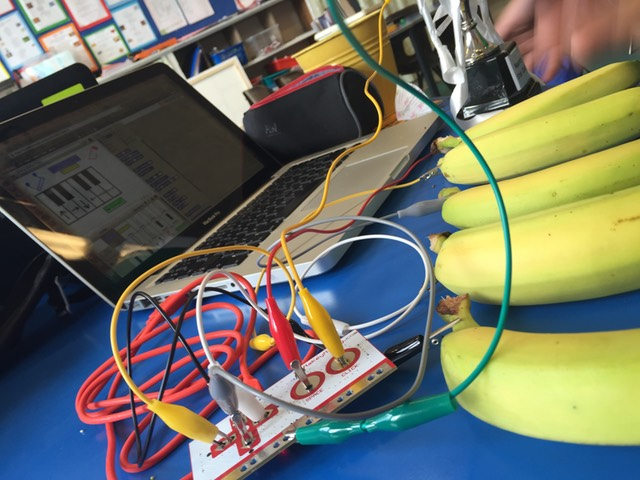 A Makey Makey kit being attached to a bunch of bananas